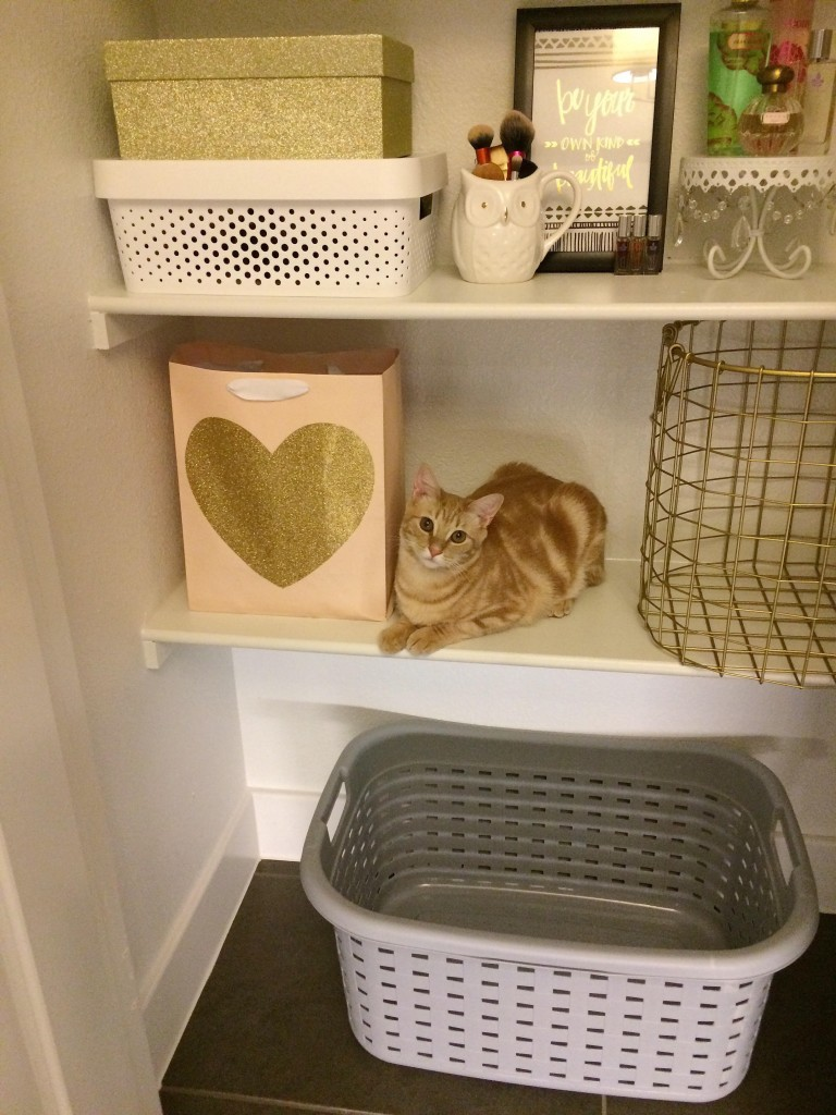 Cute orange cat sitting on shelf inside linen closet